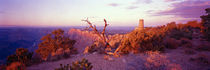 Desert Point, Grand Canyon National Park, Arizona, USA by Panoramic Images