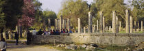 Ruins of a temple, Ancient Olympia, Peloponnese, Greece by Panoramic Images