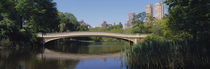 Bridge across a lake, Central Park, New York City, New York State, USA von Panoramic Images