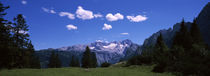Alpine meadow in front of mountains, Dachstein Mountains, Upper Austria, Austria von Panoramic Images
