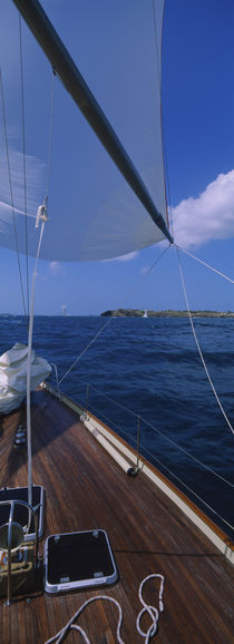 Sailboat racing in the sea, Grenada by Panoramic Images