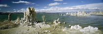 Tufa rock formations at the lakeside, Mono Lake, California, USA von Panoramic Images