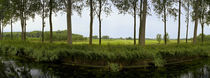 Channel passing through a landscape from Brugge to Damme, Belgium by Panoramic Images