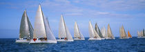 Yachts in the ocean, Key West, Florida, USA by Panoramic Images