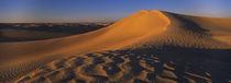 Sand dunes in a desert, Douz, Tunisia von Panoramic Images