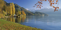 Lake Vierwaldstattersee Vitznau, Panoramic view of mountains around a lake by Panoramic Images
