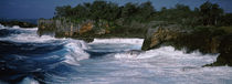 Waves breaking on the coast, Vava'u, Tonga, South Pacific by Panoramic Images