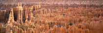 Aerial View Of The Grand Canyon, Bryce Canyon National Park, Utah, USA by Panoramic Images
