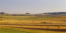 Slope country ND USA by Panoramic Images