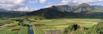 Hanalei Valley, Kauai, Hawaii, USA von Panoramic Images