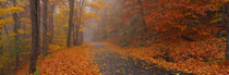 Panorama Print - Autumn Road, Monadnock Mountain, New Hampshire, USA von Panoramic Images