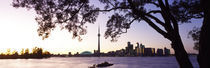 Skyline CN Tower Skydome Toronto Ontario Canada by Panoramic Images