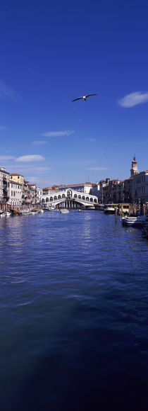 Bridge across a canal, Rialto Bridge, Grand Canal, Venice, Veneto, Italy von Panoramic Images