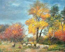 With sheep to pasture / Mit Schafe auf die Weide by Apostolescu  Sorin