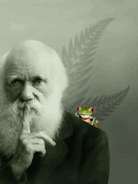 Darwinshush-poster