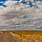 071311-palouse-wheat-field-road-hdr-00