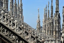 Milano, Il Duomo 1 by Almut Rother