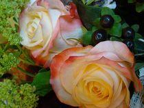 Rosen  von Ka Wegner