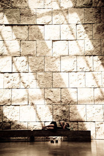 Asleep under the Sun by Monica Fischli