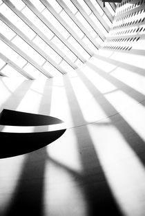 Rays of Shadow by Monica Fischli