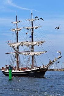 Hanse Sail 2009 - Rostock Warnemünde von captainsilva