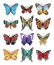 Butterflies (Papillons) von Anastassia Elias
