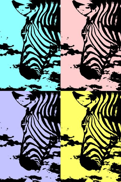 Zebra-collage