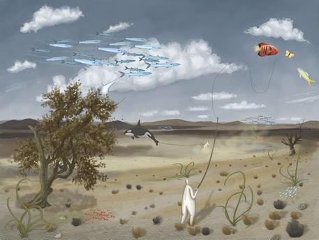 12-flying-fish