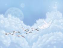 14-migrant-birds