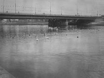 Under the bridge by martina-degamine