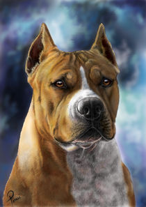 american staffordshire terrier dog  digital painting von Timi Pall