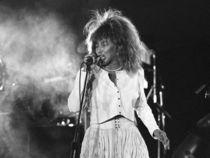 Tina Turner in Concert von James Menges