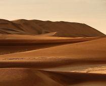 namib desert by james smit