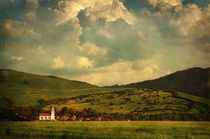 Village von David Fiscaleanu