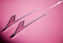 Pink by Stefan Nielsen