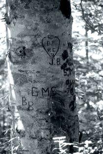 Leave your Mark by © Joe  Beasley