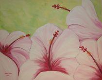'Hibiskus' by Marion Kotyba