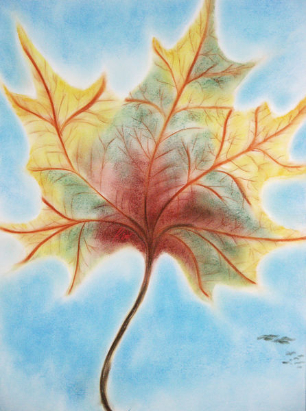 Herbstfaecher