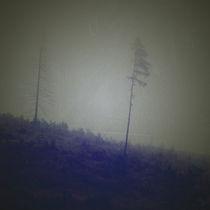 Lost in... by martina-degamine