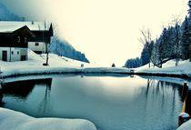 Winter Snow by Karina Stinson
