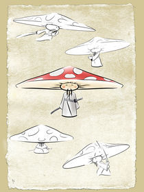 Samurai Mushroom  by Rob Stilwell
