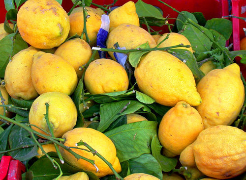 Lemon-campania-af
