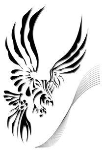 Eagle von Lukasz Wójcik
