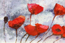 Roter Mohn - Red Poppies by Lutz Baar