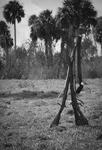 Guns by Savana Evans