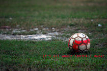 Red soccer ball in the field by Nahar Mokhtar