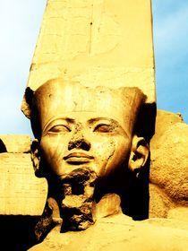 Pharao by Karina Stinson