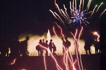 Feuerwerk im Park by pahit