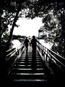 Bridge to Iguazu Waterfalls von Karina Stinson