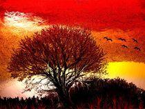 Mein Baum - mein Kraftquell by Heidrun Carola Herrmann